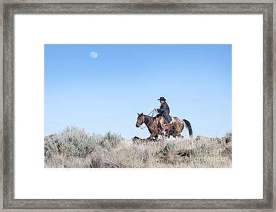 Cowboy Desert Moon Framed Print by Cindy Singleton