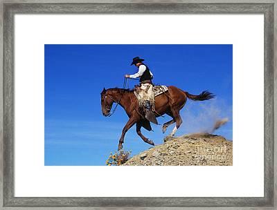 Cowboy Framed Print by George D Lepp and Photo Researchers