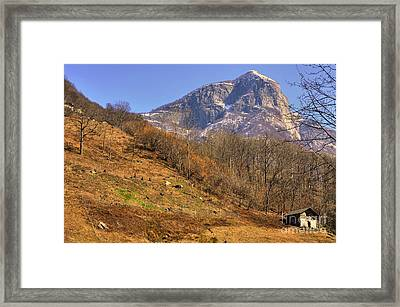 Cowhouse And Snow-capped Mountain Framed Print
