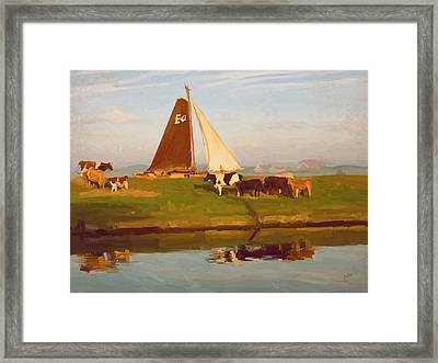 Cows And Sails Framed Print