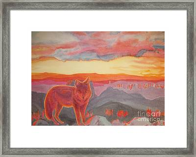 Coyote Cliff Framed Print by Vikki Wicks