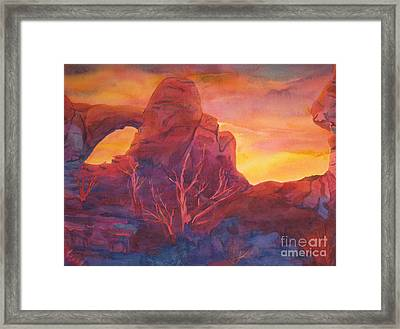 Coyote Dusk Framed Print by Vikki Wicks
