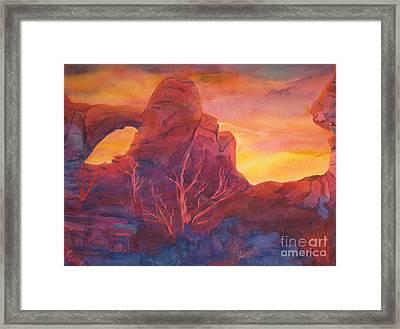 Coyote Dusk Framed Print by Vikki Wicks