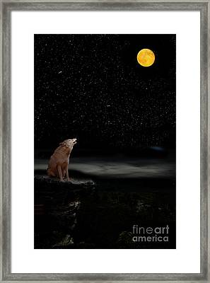 Framed Print featuring the photograph Coyote Howling At Moon by Dan Friend