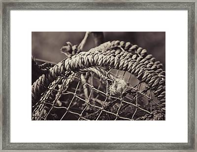 Crab Cage Framed Print by Justin Albrecht
