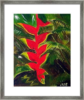 Crab Claw Heliconia Framed Print by Maria Soto Robbins