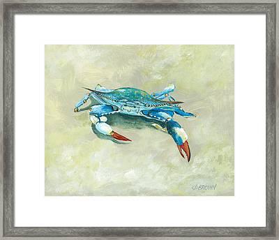 Crab On Beach Framed Print
