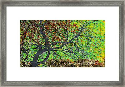 Crabapples West Acid Pop Framed Print by Feile Case