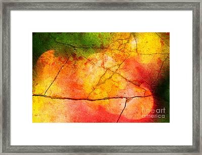 Cracked Kaleidoscope Framed Print by Silvia Ganora