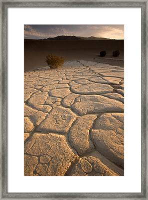 Cracked Mud Lies On Top Of The Sand Framed Print by Phil Schermeister