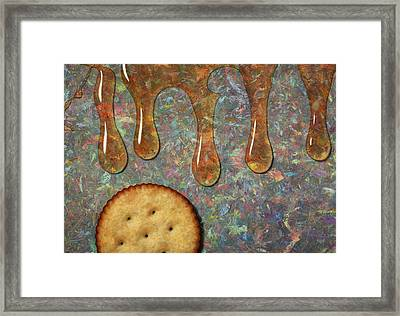 Cracker Honey Framed Print by James W Johnson