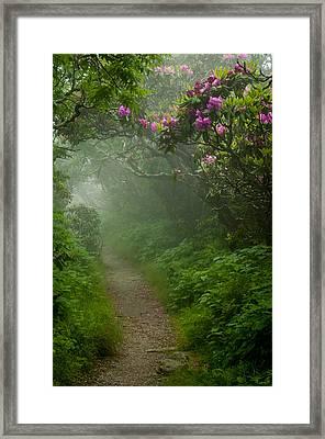 Craggy Path 2 Framed Print by Joye Ardyn Durham