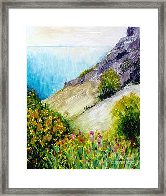 Crags And Wildflowers Of Monaco Framed Print by Hilary England