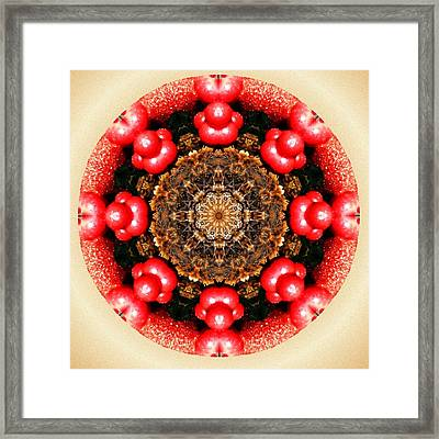 Cranberries And Pine Cones Framed Print