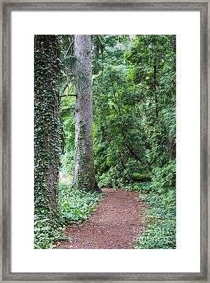 Cranbrook College Botanical Gardens Framed Print by Linda Gardner-Goos