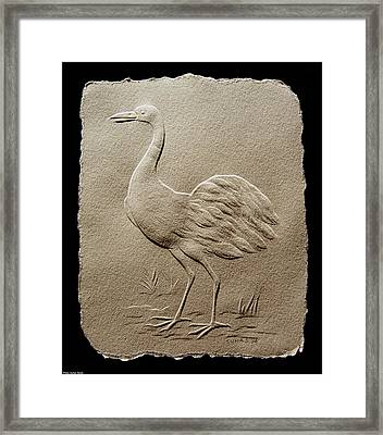 Crane Bird Framed Print by Suhas Tavkar