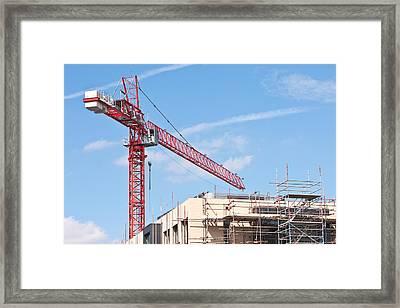 Crane Framed Print by Tom Gowanlock