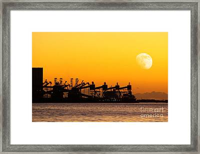 Cranes At Sunset Framed Print by Carlos Caetano