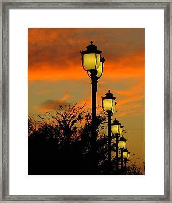 Cranes Roost Lights Framed Print