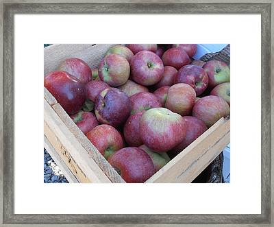 Crate Of Apples Framed Print by Kimberly Perry