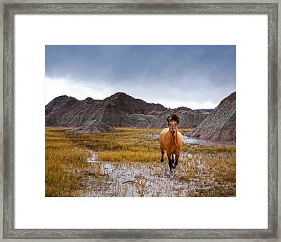 Crazy Horse Framed Print by Ron  McGinnis