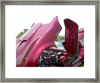 Crazyvette Framed Print