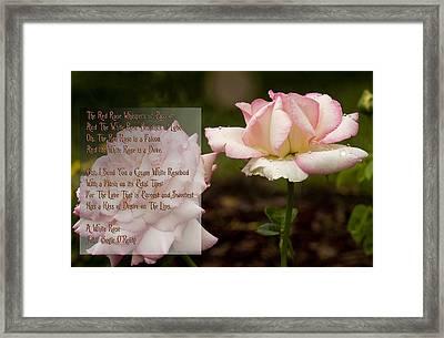 Cream White Rosebud With Poem Framed Print by Barbara Middleton