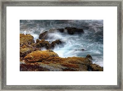 Creamy Wave Framed Print by Dexter Fassale