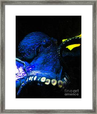 Creatures Of The Deep - The Octopus - V6 - Blue Framed Print by Wingsdomain Art and Photography