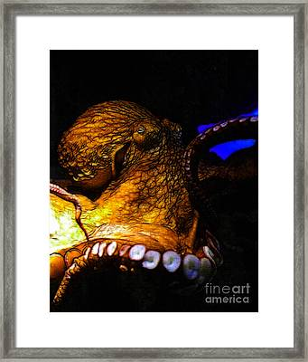 Creatures Of The Deep - The Octopus - V6 - Gold Framed Print by Wingsdomain Art and Photography