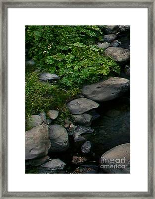 Creek Flow Panel 2 Framed Print by Peter Piatt
