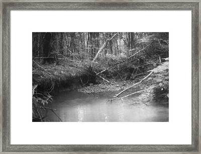Creek Framed Print by Floyd Smith