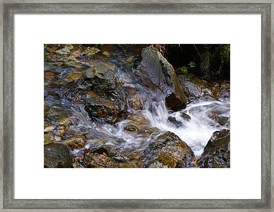 Framed Print featuring the photograph Creek Scene On Mt Tamalpais by Ben Upham III