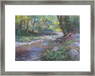 Creek Study Framed Print