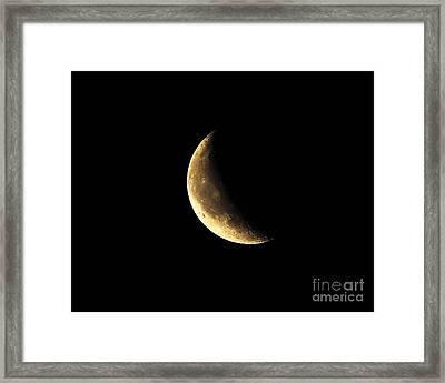 Crescent Close Up Framed Print
