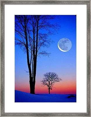 Crescent Through Trees Framed Print