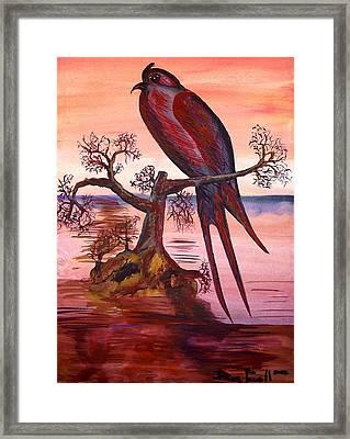 Crested Swift Framed Print