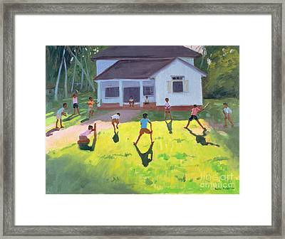 Cricket Framed Print by Andrew Macara