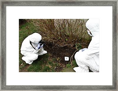Criminal Investigation Framed Print