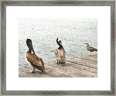 Criticism Framed Print