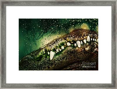 Crocodile Teeth Framed Print by Denis Pristavko
