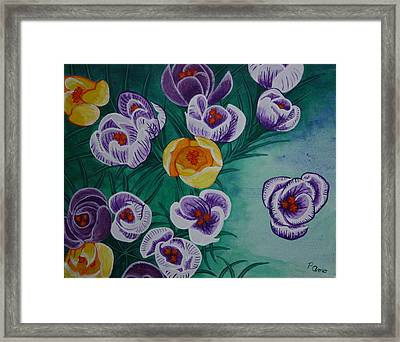 Framed Print featuring the painting Crocus by Paul Amaranto