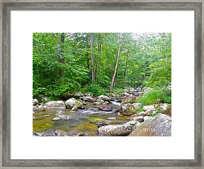 Framed Print featuring the photograph Crooked Creek by Eve Spring