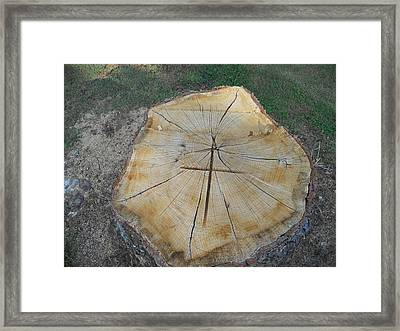 Framed Print featuring the photograph Cross In The Wood by Diannah Lynch