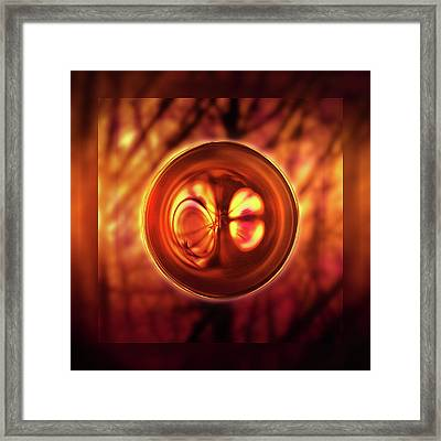 Cross Section Framed Print by Li   van Saathoff