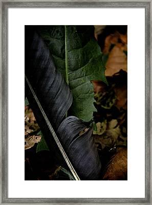Crossing Swords Framed Print by Odd Jeppesen