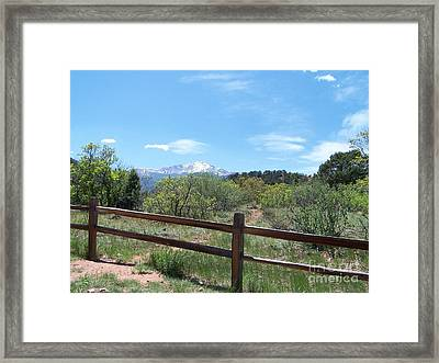 Crossing The Fence Framed Print by Jack Norton