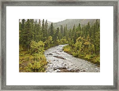 Crossing The Stream In Denali Framed Print by Jim and Kim Shivers