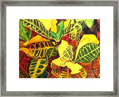 Croton Joy Framed Print