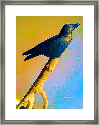 Crow At Rest Framed Print